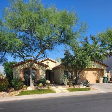 2334 W Sax Canyon Lane, Phoenix, AZ 85086 (MLS #6151459) :: The Carin Nguyen Team