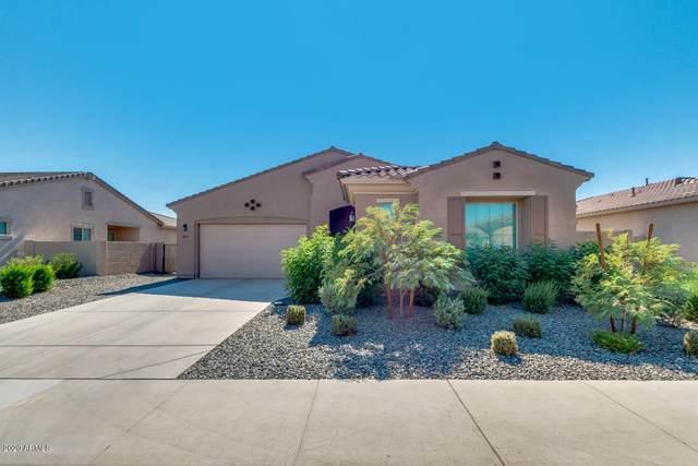 19013 W Oregon Avenue, Litchfield Park, AZ 85340 (MLS #6151475) :: The Garcia Group