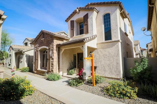5344 W Molly Lane, Phoenix, AZ 85083 (MLS #6151515) :: Budwig Team   Realty ONE Group