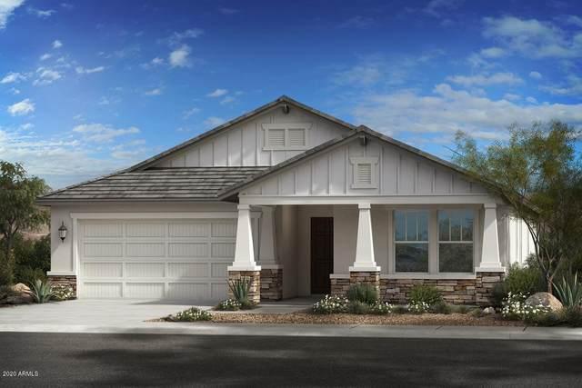 7922 N 82ND Lane, Glendale, AZ 85303 (MLS #6151555) :: Yost Realty Group at RE/MAX Casa Grande