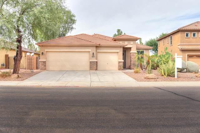 19106 N Arbor Drive, Maricopa, AZ 85138 (MLS #6151561) :: Budwig Team | Realty ONE Group