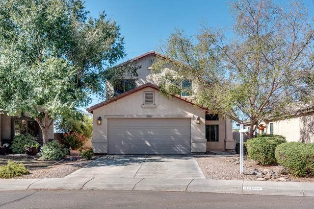 37864 N Amy Lane, San Tan Valley, AZ 85140 (MLS #6151575) :: CANAM Realty Group