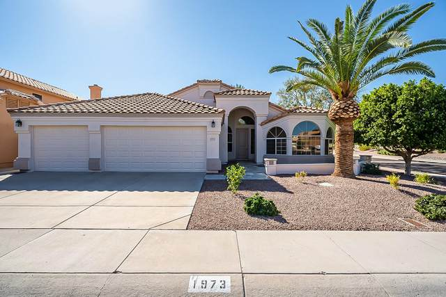 1973 W Spruce Drive, Chandler, AZ 85286 (MLS #6151578) :: NextView Home Professionals, Brokered by eXp Realty