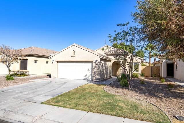 1012 W Desert Seasons Drive, San Tan Valley, AZ 85143 (MLS #6151585) :: CANAM Realty Group
