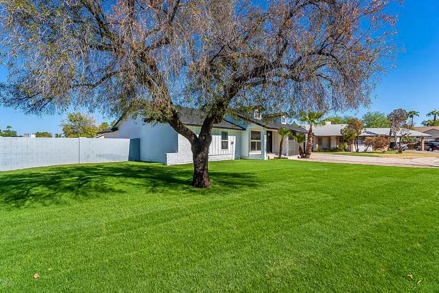 3348 E Forge Avenue, Mesa, AZ 85204 (MLS #6151612) :: NextView Home Professionals, Brokered by eXp Realty