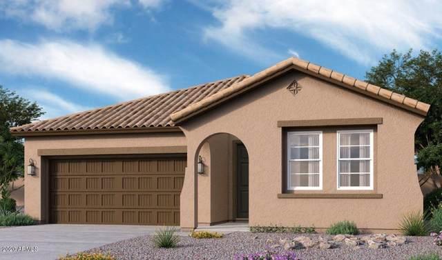 20871 E Kingbird Drive, Queen Creek, AZ 85142 (MLS #6151624) :: My Home Group