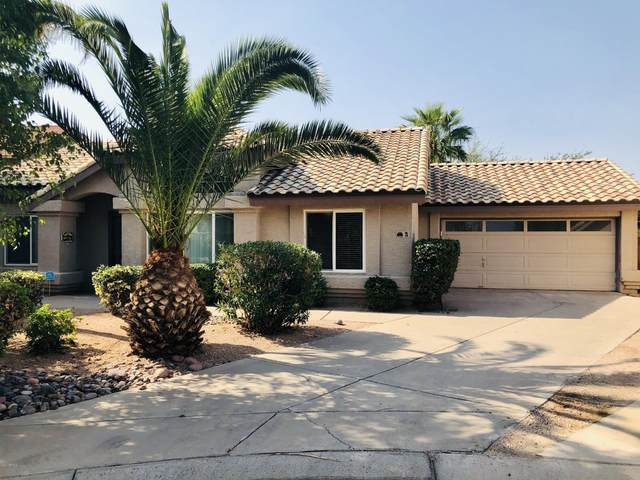 1333 N Higley Road #3, Mesa, AZ 85205 (MLS #6151628) :: NextView Home Professionals, Brokered by eXp Realty