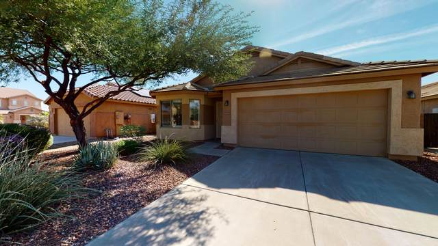 30351 W Catalina Drive, Buckeye, AZ 85396 (MLS #6151651) :: Dijkstra & Co.