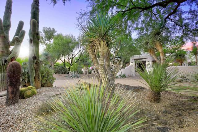 9016 N Morning Glory Road, Paradise Valley, AZ 85253 (#6151657) :: Luxury Group - Realty Executives Arizona Properties