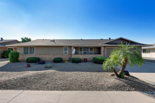 9711 W Calico Drive, Sun City, AZ 85373 (MLS #6151669) :: The Daniel Montez Real Estate Group