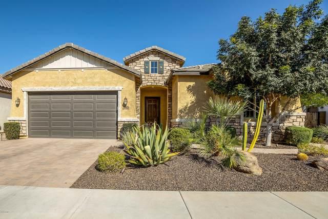 1962 E Canyon Way, Chandler, AZ 85249 (MLS #6151672) :: My Home Group