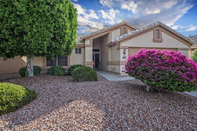 2945 N 148TH Avenue, Goodyear, AZ 85395 (MLS #6151673) :: Sheli Stoddart Team | M.A.Z. Realty Professionals