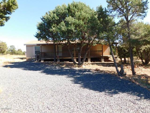 3687 Green Forest Drive, Overgaard, AZ 85933 (MLS #6151678) :: NextView Home Professionals, Brokered by eXp Realty