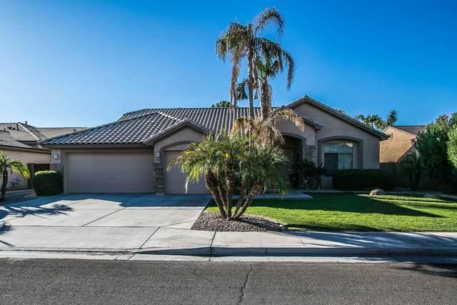 2441 W Thompson Way, Chandler, AZ 85286 (MLS #6151680) :: My Home Group