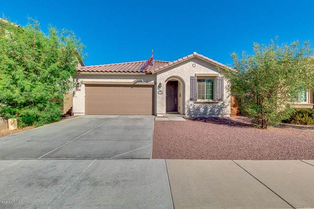 13242 W Rowel Road, Peoria, AZ 85383 (MLS #6151701) :: Power Realty Group Model Home Center