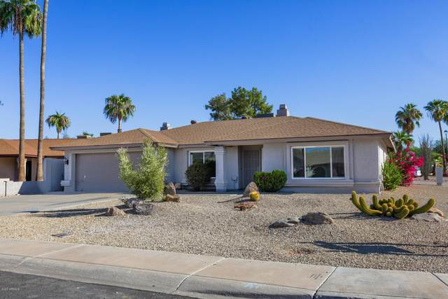 18227 N 41ST Lane, Glendale, AZ 85308 (MLS #6151738) :: The Laughton Team
