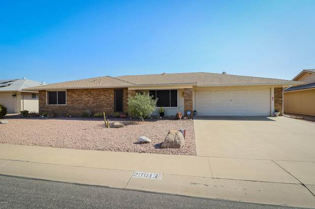 20013 N 99TH Drive, Sun City, AZ 85373 (MLS #6151745) :: The Everest Team at eXp Realty