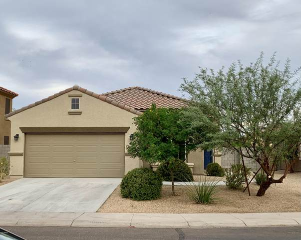 2317 S 119TH Drive, Avondale, AZ 85323 (MLS #6151793) :: Sheli Stoddart Team | M.A.Z. Realty Professionals