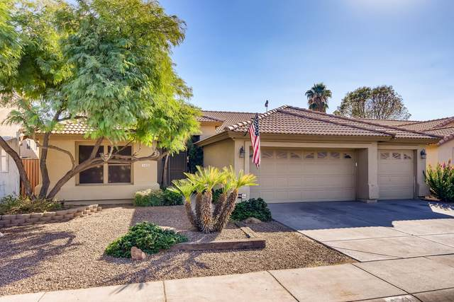 4041 W Irma Lane, Glendale, AZ 85308 (MLS #6151819) :: The W Group