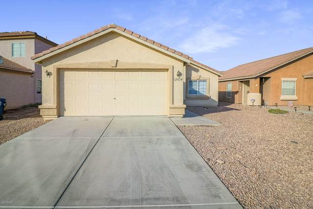 12614 W Rosewood Drive, El Mirage, AZ 85335 (MLS #6151823) :: Conway Real Estate