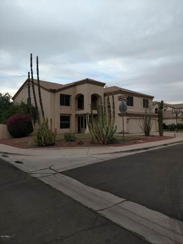 1132 W Wildhorse Drive, Chandler, AZ 85286 (MLS #6151839) :: The Carin Nguyen Team