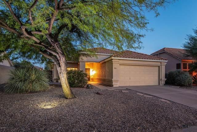 4025 N Olympic Circle, Mesa, AZ 85215 (MLS #6151845) :: Devor Real Estate Associates
