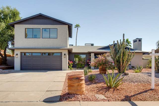 15237 N 52ND Place, Scottsdale, AZ 85254 (MLS #6151864) :: CANAM Realty Group