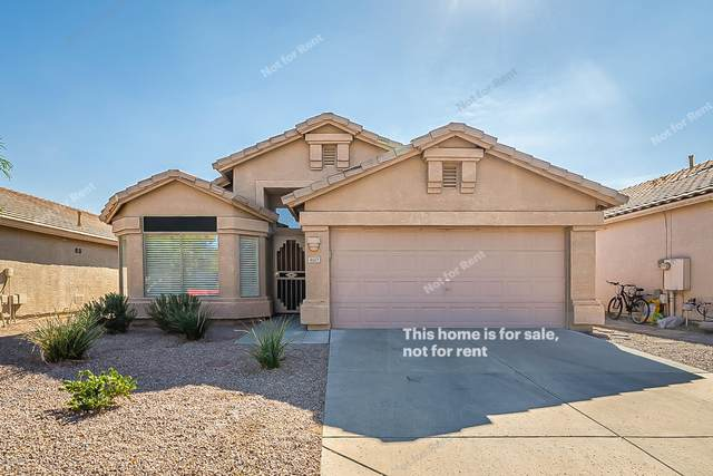 4643 E Briarwood Terrace, Phoenix, AZ 85048 (MLS #6151866) :: The Garcia Group