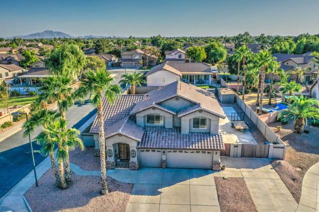 333 W Patrick Street, Gilbert, AZ 85233 (MLS #6151896) :: The Carin Nguyen Team