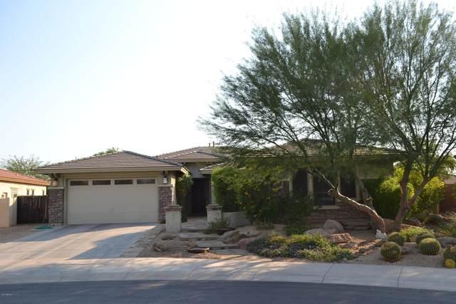 1817 W Horsetail Trail, Phoenix, AZ 85085 (MLS #6151904) :: The W Group