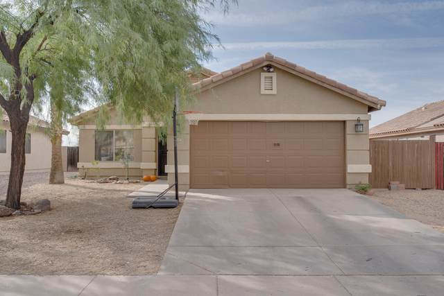 1047 E Santa Cruz Lane, Apache Junction, AZ 85119 (MLS #6151924) :: Long Realty West Valley