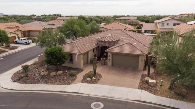 12237 W Ashby Drive, Peoria, AZ 85383 (MLS #6151944) :: RE/MAX Desert Showcase