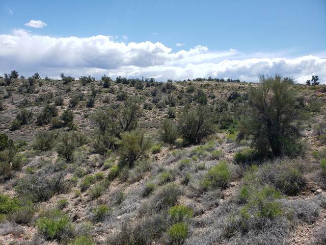 0000 E Salome Road, Hackberry, AZ 86411 (MLS #6151983) :: Yost Realty Group at RE/MAX Casa Grande