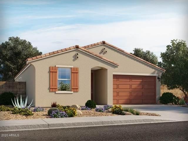 12616 W Northview Avenue, Glendale, AZ 85307 (MLS #6151990) :: Sheli Stoddart Team | M.A.Z. Realty Professionals