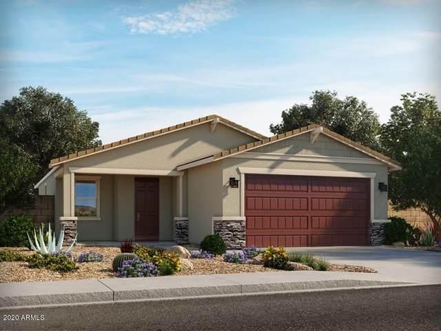 12564 W Northview Avenue, Glendale, AZ 85307 (MLS #6151997) :: RE/MAX Desert Showcase