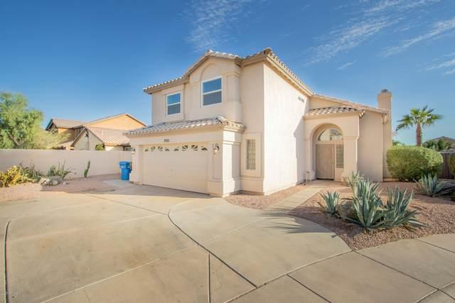 2921 E Nighthawk Way, Phoenix, AZ 85048 (MLS #6152070) :: Dijkstra & Co.