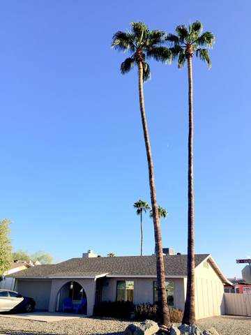 3561 W Galveston Street, Chandler, AZ 85226 (MLS #6152159) :: The Garcia Group