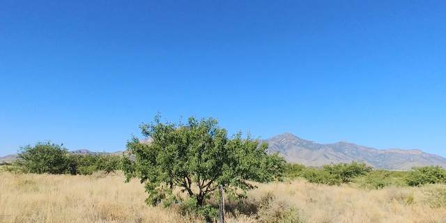 7922 E Jaykay Drive, Hereford, AZ 85615 (MLS #6152173) :: The Riddle Group