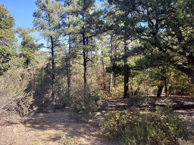 5300 W Timberlost Trail, Prescott, AZ 86305 (MLS #6152208) :: West Desert Group | HomeSmart
