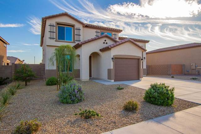 18169 W Louise Drive, Surprise, AZ 85387 (MLS #6152222) :: Power Realty Group Model Home Center