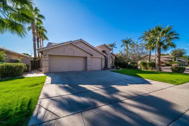 3360 S Pleasant Place, Chandler, AZ 85248 (MLS #6152234) :: My Home Group
