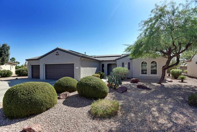 15015 W Rounders Drive, Surprise, AZ 85374 (MLS #6152259) :: Power Realty Group Model Home Center