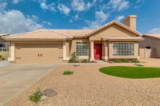 5302 E Elena Avenue, Mesa, AZ 85206 (MLS #6152266) :: My Home Group