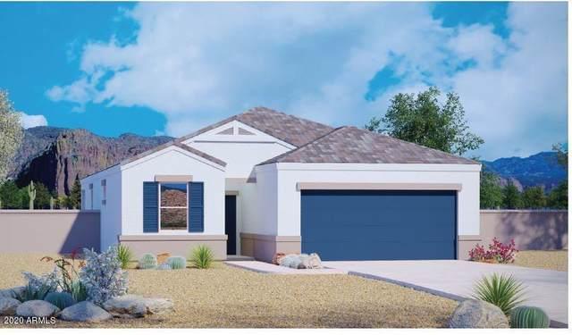 10934 E Verbina Lane, Florence, AZ 85132 (MLS #6152370) :: The W Group