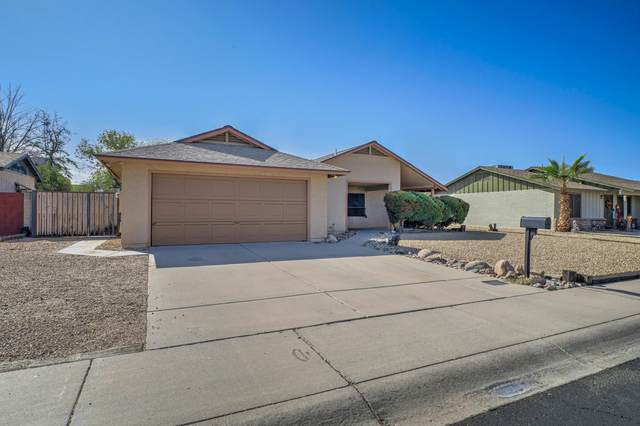 2733 W Bluefield Avenue, Phoenix, AZ 85053 (MLS #6152372) :: Yost Realty Group at RE/MAX Casa Grande