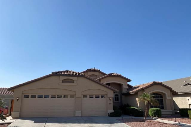 12527 W Solano Drive, Litchfield Park, AZ 85340 (MLS #6152374) :: Keller Williams Realty Phoenix