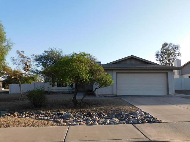 4837 E Olney Drive, Phoenix, AZ 85044 (MLS #6152378) :: My Home Group
