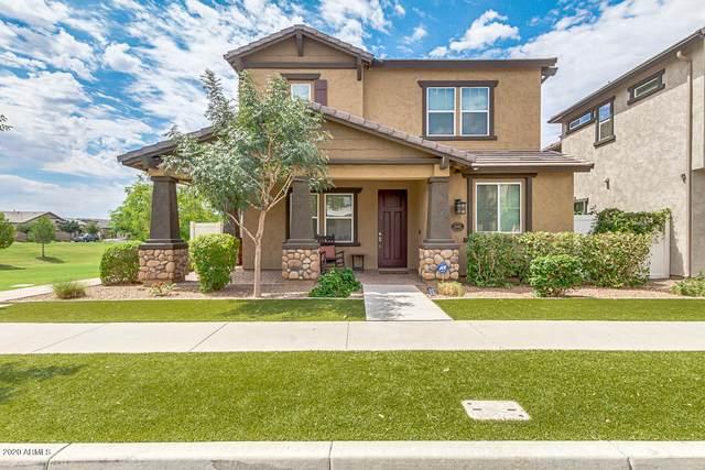 10461 E Neville Avenue, Mesa, AZ 85209 (MLS #6152386) :: The Daniel Montez Real Estate Group