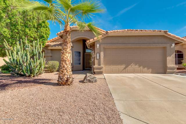 231 S Comanche Drive, Chandler, AZ 85224 (MLS #6152406) :: My Home Group