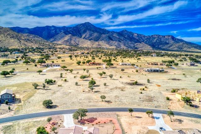 TBD lot 66 E Saddlehorn Circle, Hereford, AZ 85615 (MLS #6152433) :: The Riddle Group